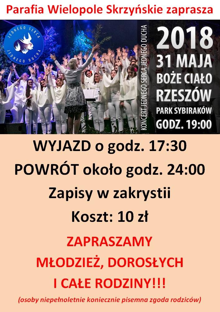 plakat - koncert JSJD